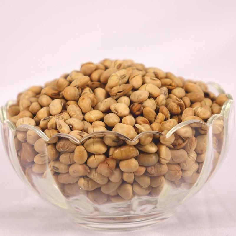 Roasted Salted Soya Nuts