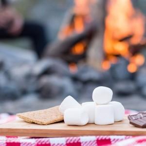 Vegan Vanilla Mist Marshmallow